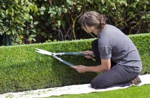 Blog-Hexenschuss-Tipps-zur-Vorbeugung-Gartenarbeit