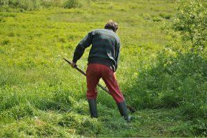 Hexenschuss-Gartenarbeit-der-schnellste-Weg-zu-Rückenschmerzen