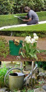 Hexenschuss-Tipps-zur-Vorbeugung-Gartenarbeit